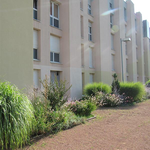 Location Roanne appartement T3